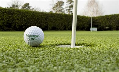 Erba-Sintetica-per-campi-da-golf