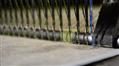 """Produzione, per arrivare alla realizzazione del tappeto in erba sintetica Italgreen segue i seguenti processi: Estrusione, Torsione, Tessitura (nella foto), Spalmatura... <a href=""""/azienda/dalla-produzione-all-installazione-il-tuo-manto-in-erba-sintetica-chiavi-in-mano"""">Leggi tutto</a>"""